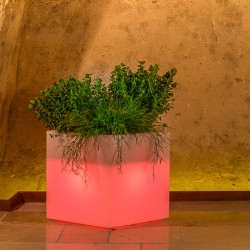 MONACIS CUBE POT BRIGHT RED VASO LUMINOSO 40 X 40 X 40 CM
