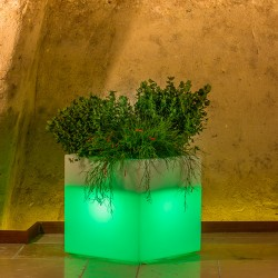 MONACIS CUBE POT BRIGHT GREEN VASO LUMINOSO 40 X 40 X 40 CM