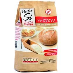 MIX FARINA SENZA GLUTINE 1 KG NUTRISI