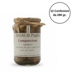 Tocchi di Puglia Lampascioni in Olio Extra Vergine di Oliva Multipack 12 Confezioni da 280 grammi