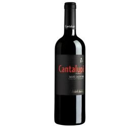 CONTI ZECCA CANTALUPI SALICE SALENTINO RISERVA CL75